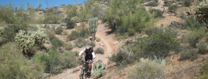 Phoenix, Mountain bike camp
